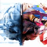 脳はハードウェア的に多くを処理している。脳科学と機械学習