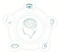 深層学習×マルチモーダル。マルチモーダル学習で未来が広がる